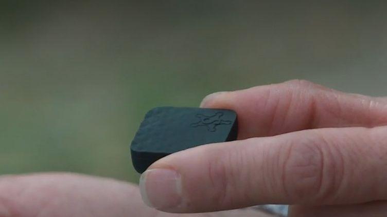Le dispositif d'alerte testé dans l'Yonne. (FRANCE 2)