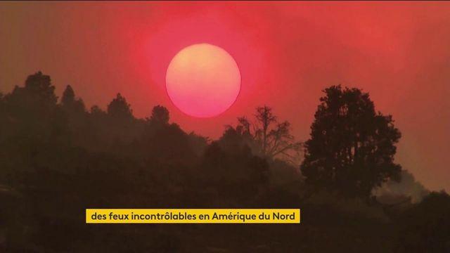 Incendies : des feux d'une grande intensité frappent violemment l'Amérique du Nord