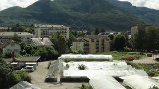 Annecy : un maraîcher fait pousser ses légumes en plein centre-ville (France 2)