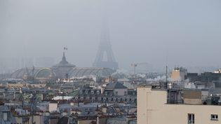La pollution atmosphérique dans le ciel de Paris, le 21 janvier 2016. (MAXPPP)