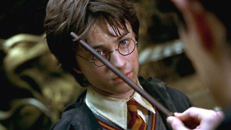 """Image extraite du film """"Harry Potter et la chambre des secrets"""", sorti en 2002. (1492 PICTURES / HEYDAY FILMS / AFP)"""