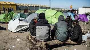 Des migrants à Calais en mars 2020. Photo d'illustration. (SEBASTIEN COURDJI / EPA)