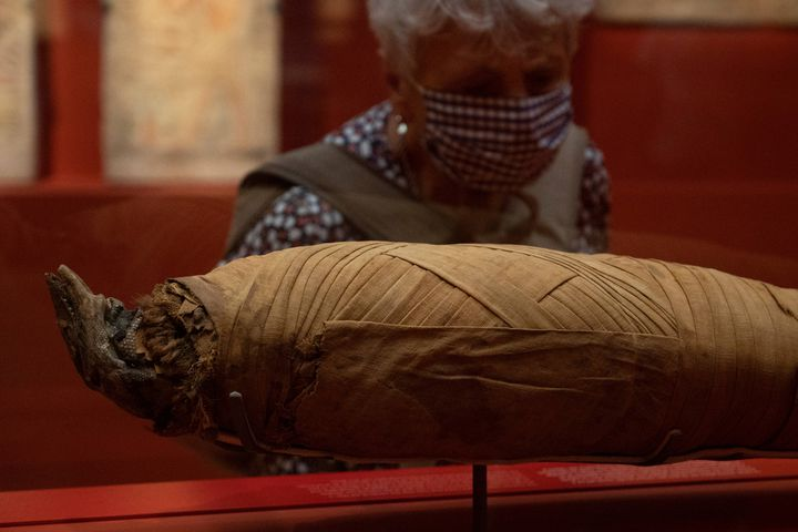 """La momiedu varan exposée au musée Granet d'Aix-en-Provence, le 18 septembre 2020 à la veille de l'ouverture de l'exposition """"Pharaon, Osiris et la momie"""" (CHRISTOPHE SIMON / AFP)"""