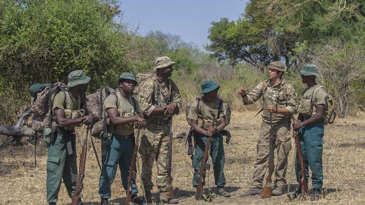 Des soldats britanniques forment des rangers malawites dans le parc national de Liwonde au Malawi le 14 octobre 2017. (AMOS GUMULIRA / AFP)