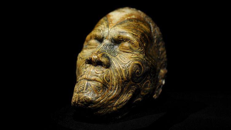 """Un crâne présenté dans le cadre de l'exposition """"Maori, leurs trésors ont une âme"""" au musée du quai Branly, qui s'est achevée le 22 janvier 2012. (MARS JEROME / JDD / SIPA)"""