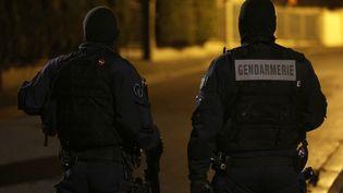 Des gendarmes lors d'une nuit de violences à Beaumont-sur-Oise (Val-d'Oise), le 23 novembre 2016. (GEOFFROY VAN DER HASSELT / AFP)