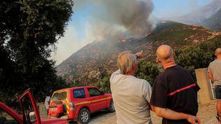 Un incendie fait ragedans la région de Barbaggio(Haute-Corse) le 25 août 2016. (MAXPPP)