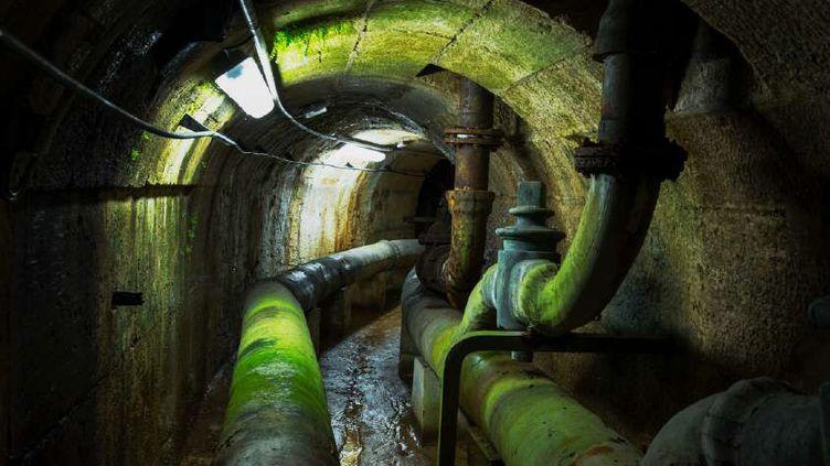 La photographe américaine Nan Goldin a choisi elle de s'intéresser à un lieu plus insolite et inaccessible au public: l'impressionnant réseau hydraulique souterrain. (Nan Goldin / Château de Versailles)