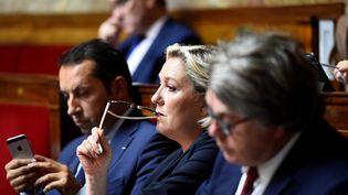 Marine Le Pen sur les bancs de l'Assemblée nationale le 10 juillet 2017. (BERTRAND GUAY / AFP)
