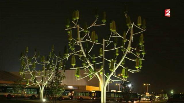 J'innove : quand un arbre produit de l'électricité