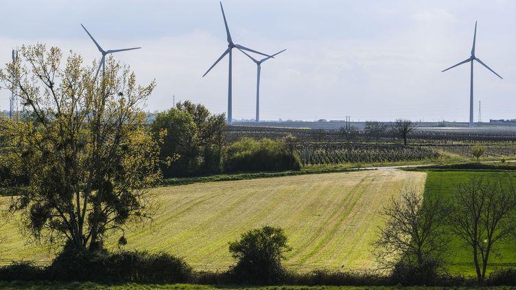 Un parc éolien installé à proximité du village de Tigné, en Maine-et-Loire, le 20 avril 2021. (JEAN-MICHEL DELAGE / HANS LUCAS / AFP)