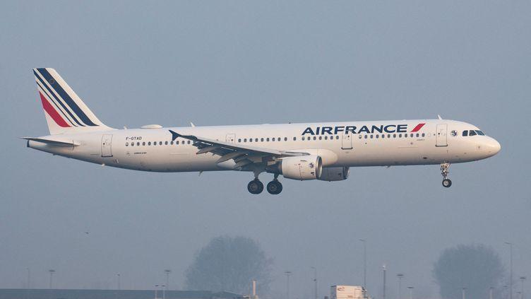 Un Airbus A321 atterrit à Amsterdam, aux Pays-Bas, le 1er avril 2021. (NICOLAS ECONOMOU / NURPHOTO / AFP)