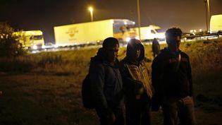 Des migrants attendent dans l'espoir de passer en Angleterre via le tunnel sous la Manche, le 24 juin 2015 à Calais. (THIBAULT CAMUS / AP / SIPA)