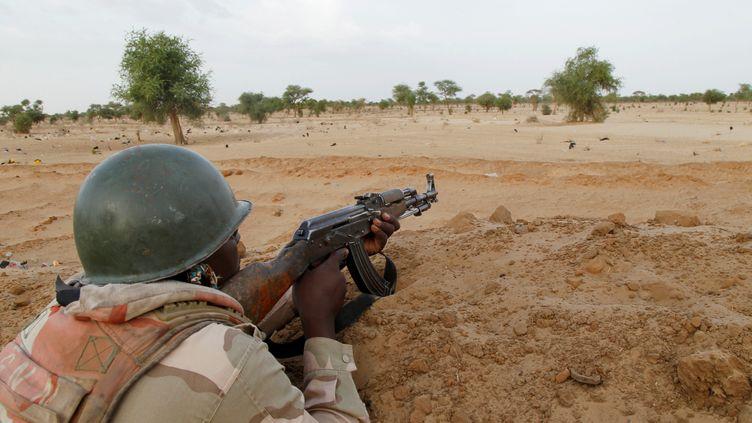 Militaire nigérien dans la région de Diffa, non loin de la frontière avec le Nigeria, le 21 juin 2016 (LUC GNAGO / X01459)