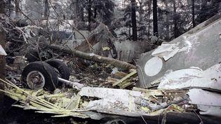 Crash d'un A30 d'Air Inter dans le Bas-Rhin, le 21 janvier 1992. (JEAN-PHILIPPE KSIAZEK / AFP)