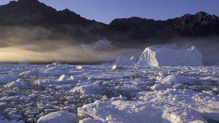 """La neige s'assombrit au Groenland, selon une étude publiée dans """"Nature Geoscience"""", le 8 juin 2014. (ONLY FRANCE / AFP)"""