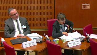 La procureure générale de Paris, Catherine Champrenault, lors de son audition devant la commission d'enquête de l'Assemblée nationale sur l'indépendance de la justice, le 2 juillet 2020. (CAPTURE D'ECRAN FRANCEINFO)