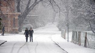 Le parc des Buttes-Chaumont, à Paris, sous la neige en 2013. (BEAUVIR-ANA / ONLY FRANCE / AFP)