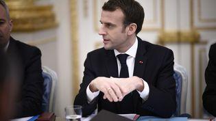 Emmanuel Macron, le 9 janvier 2019 au palais de l'Elysée, à Paris. (MAXPPP)