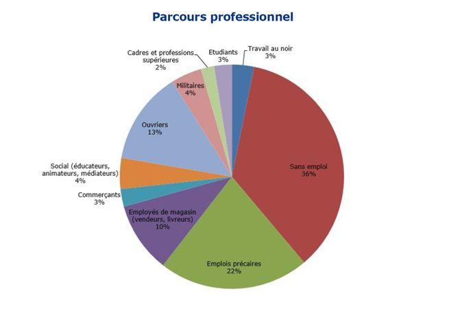 Le parcours professionnel de 124 personnes condamnées pour des faits de terrorisme entre 2004 et 2017. (IFRI)