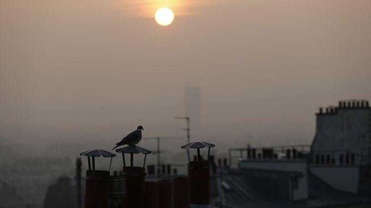 La pollution apparaît clairement du haut des toits de Paris, le 11 mars 2014. (PATRICK KOVARIK / AFP)