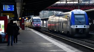 Un TGV et un train TER en gare de Nancy (Meurthe-et-Moselle) le 29 décembre 2019. (MAXPPP)