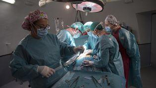 Une opération de greffe de rein, en 2016. (PIERRE-PHILIPPE MARCOU / AFP)