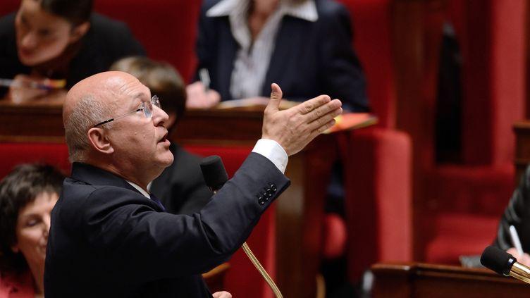 Le ministre du Travail, Michel Sapin, le 11 juin 2013 à l'Assemblée nationale. (ERIC FEFERBERG / AFP)