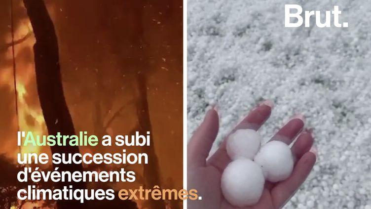 VIDEO. En Australie, la situation vire au cauchemar climatique (BRUT)