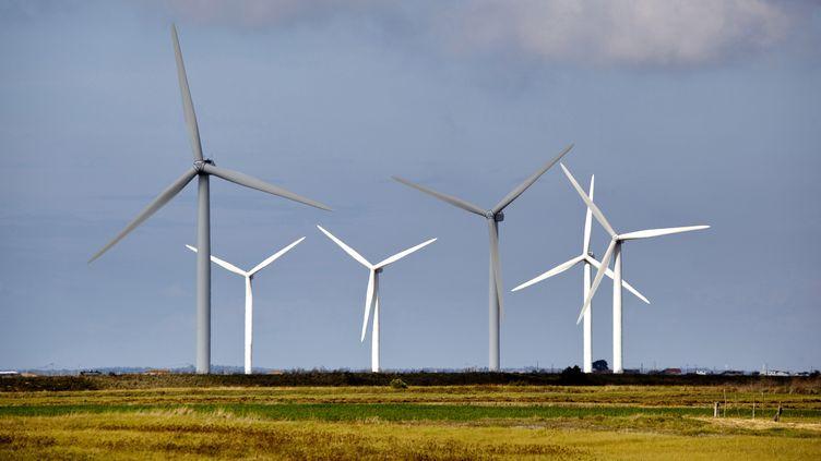 Des éoliennes tournent à Bouin (Vendée), le 13 août 2018. (PHILIPPE ROY / AFP)