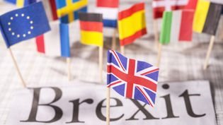 David Cameron a promis d'organiser un référendum sur le maintien ou la sortie de son pays de l'Union européenne, sans doute dès le mois de juin 2016. (KLAUS OHLENSCHLEGER / PICTURE ALLIANCE / AFP)