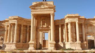 Le drapeau du groupe Etat islamique sur le site antique de Palmyre, sur une image diffusée par l'EI le 28 mai 2015. (WELAYAT HOMS / AFP)