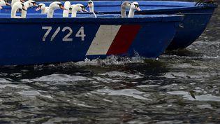 Des cygnes sont transportés en bateau vers leur lieu de résidence hivernale à Hambourg (Allemagne), le 18 novembre 2014. (FABIAN BIMMER / REUTERS)