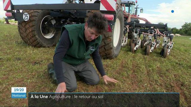 Environnement : la protection du sol, essentielle pour l'agriculture