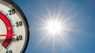 L'année 2015 a été la plus chaude depuis que les relevés météorologiques existent, soit depuis la fin du XIXe siècle, selon l'Agence américaine océanique et atmosphérique. (PATRICK PLEUL / DPA / AFP)