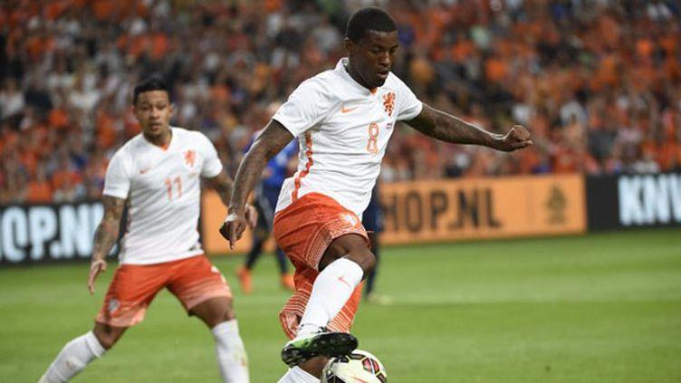 Georginio Wijnaldum, sous le maillot des Pays-Bas.  (JOHN THYS / AFP)