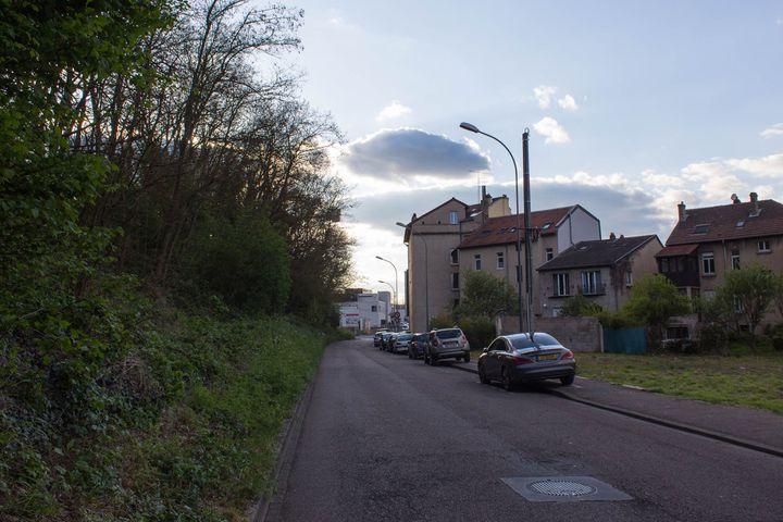 Le talus de la rue Venizélos à Montigny-lès-Metz (Moselle), le 19 avril 2017. (VIOLAINE JAUSSENT / FRANCEINFO)