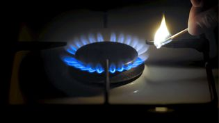 Les prix du gaz pourraient augmenter de 1,8% le 1er janvier 2015. (  MAXPPP)