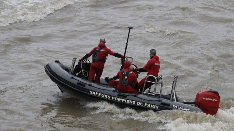 D'importants moyens ont été déployés pour retrouver la policière, disparue dans la Seine à Paris depuis le 5 janvier. (THOMAS SAMSON / AFP)