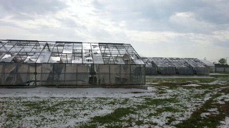 Des bâtiments de l'INRA (Institut National de la Recherche agronomique) ont été abîmés par une averse de grêle à Lusignan (Vienne), le 9 juin 2014. (MARIE-NOËLLE MISSUD / FRANCE 3 POITOU-CHARENTES)