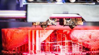 Une imprimante 3D imprime le squelette d'un patient grâce à un scanner à l'hôpital de Dijon. (GARO / PHANIE / AFP)