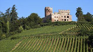 Le château de Kintzheim dans le Bas-Rhin. (ZYLBERYNG DIDIER / HEMIS.FR)
