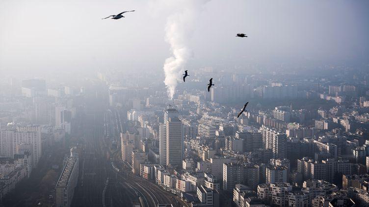 Une vue du ciel de Paris, le 29 décembre 2016. (LIONEL BONAVENTURE / AFP)