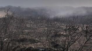 La situation reste toujours aussi problématique au nord-ouest deLa Réunion. Un important incendie continue de ravager les terres, lundi 9 novembre. (CAPTURE D'ÉCRAN FRANCE 3)
