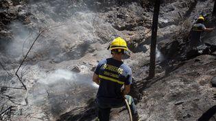 Un pompier combat les flammes dans une zone ravagée par l'incendie qui a sévit sur l'île de Grande Canarie (Espagne), le 13 août 2019 (DESIREE MARTIN / AFP)
