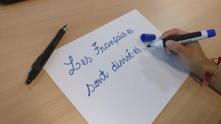 L'écriture inclusive intègre le point médianpour condenser l'emploi du féminin et du masculinen un seul mot. (VINCENT MATALON / FRANCEINFO)