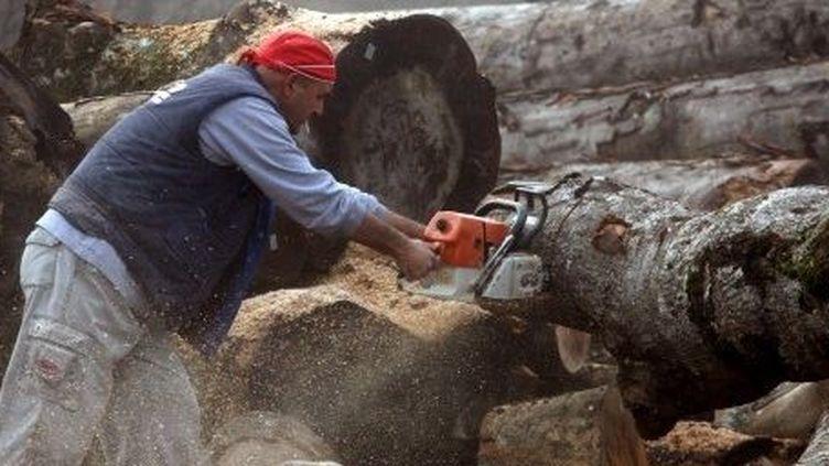 Les Grecs se retournent vers le bois pour se chauffer. (SAKIS MITROLIDIS / AFP)