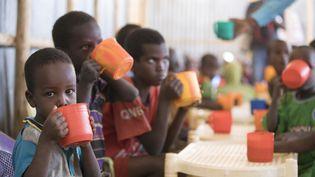 Desenfants boivent un mélange riche en protéines fourni par le Programme alimentaire mondial (PAM) au camp de réfugiés de Mekladida en Éthiopie, le 19 décembre 2017. (ZACHARIAS ABUBEKER / AFP)