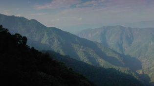 """Les montagnes indiennes du Meghalaya, qui signifie littéralement la """"Demeure des nuages"""", cachent une rivière aux eaux transparentes, protégée par une tribu autochtone qui vénère la nature. (France 2)"""