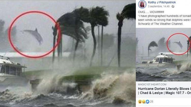 """Capture d'écran un article partagé sur Facebook intitulé""""Un photographe capture un dauphin pris dans les vents de l'ouragan"""" et publié sur le site sur le site parodiquepeopleoflancaster.com (CAPTURE D'ÉCRAN)"""
